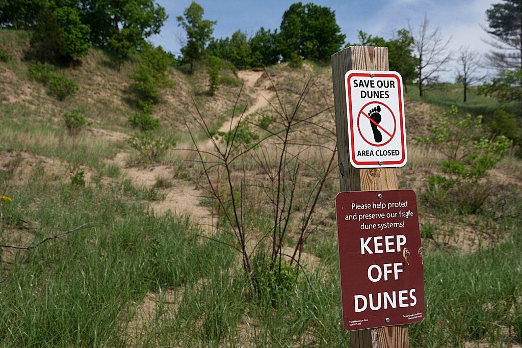 Save Our Dunes